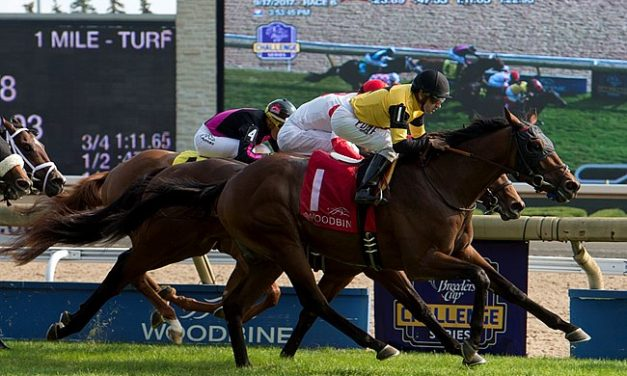 3-Year-Old Graded Winners: Where They're Headed Next | Summer Stakes 101