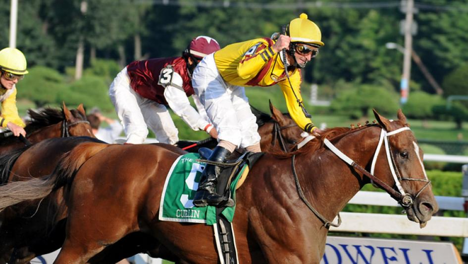 Curlin Stakes Quick Picks