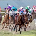 Bing Crosby Stakes Quick Picks